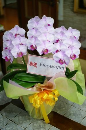 DSC05246blog.jpg