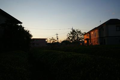 DSC07581.jpg